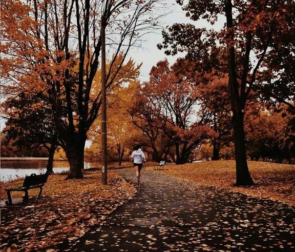 20 златни правила за бягането