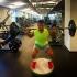 Григор Димитров е в отлична физическа форма (видео)