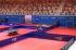 37 българи започват на турнира в Панагюрище