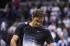 Федерер: Дел Потро ще има повече шансове срещу Рафа, отколкото аз (снимки)