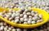 Соя и соеви продукти – храна за шампиони