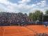 Халеп срещу Херцог на старта на турнира в Прага