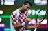 Непобедим Чилич изведе хърватите на финал